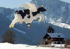 This is what my elementary school teacher always said: If cows could fly... :)