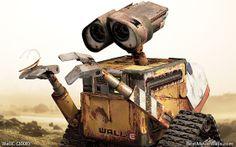 Wall-e's roach pet