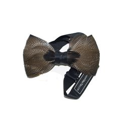 Pintail Duck Feather Bow Tie | SOUTH | Charleston, SC
