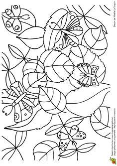 Cache Cache Feuilles Papillons, page 14 sur 16 sur HugoLescargot.com