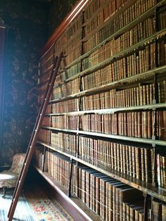 Lots of lovely old books in Brodsworth Hall, an old Victorian country house