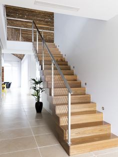Boxed | Cantilevered | Stair | Staircase | Timber | Spotted Gum | Treads | Feature | Contemporary | Stainless Steel | Wires | Handrail | Interior Design | Balustrade | Industrial