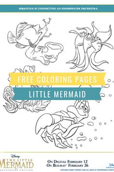 Free Printable Little Mermaid Coloring Pages - Classy Mommy Free Disney Coloring Pages, Mermaid Coloring Pages, Free Printable Coloring Pages, Coloring Pages For Kids, Disney Diy, Disney Love, Disney Magic, Disney Printables, Free Printables
