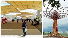 New post on the blog: EXPO MILANO 2015