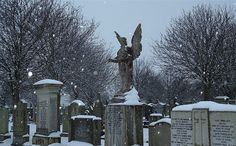 Location: Aberdeen King Street Cemetry