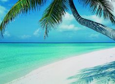 Papeete, Tahiti <3