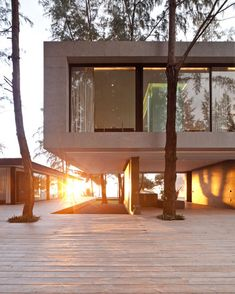 Wood and glass and trees and sunrise. Perfection.