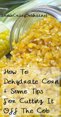 Step by step direction for dehydrating fresh, frozen, or canned corn. I also include a few tips for getting the corn off the cob. #beselfreliant