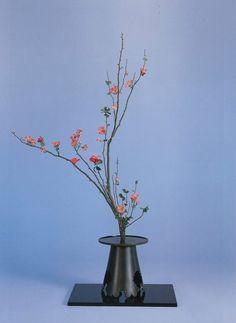 """生花正風体 一種生 木瓜 Shoka Shofutai """"Isshuike"""" using Japanese quince"""