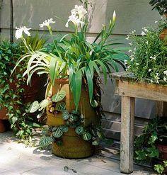 57 Best Garden Benches Images Garden Outdoor Gardens