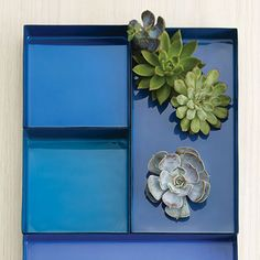 For the modern art aficionado in your life, this set of 3 enameled trays is the perfect way to win them over. Ideal for displaying curated objects on your coffee table, or for organizing jewelry in you...  Find the Cobalt Blue Art Trays - Set of 3, as seen in the End of Summer Clearance: Kitchen Collection at http://dotandbo.com/collections/end-of-summer-clearance-kitchen?utm_source=pinterest&utm_medium=organic&db_sku=DIM0245