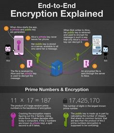 How does end-to-end encryption work? {Infographic} … How does end-to-end encryption work? Computer Coding, Computer Technology, Computer Programming, Computer Science, Energy Technology, Computer Jobs, It Wissen, Conception Web, Software Libre