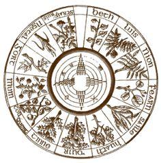 """E' nota a tutti la straordinaria venerazione dei Celti per le piante: come sottolinea il De Gubernatis, """"l'ombra degli alberi fu la prima testimone del culto degli Dei"""" e """"le foreste erano colme di..."""