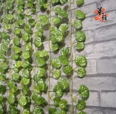 Aliexpress.com : Buy HOT  2.2m long 5 styles artificial flower rattails vine leaves silk for air tube decoration wholesale free shipping NO flowers from Reliable silk orchid suppliers on Lore 's Decoration Flowers Store. $39.99