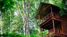 HOTEL ELLA Booking.com: Ella Ecolodge , Ella, Sri Lanka - 78 Commentaires Clients . Réservez maintenant !