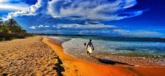 Untitled - Pinned by Mak Khalaf Travel From Arugam Bay main point! by arugambay Sri Lanka, Arugam Bay, Surfboard, Maine, Travel Destinations, Around The Worlds, Waves, Amazing Places, Beautiful Places