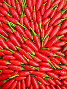 my first chilli harvest by *omnia* on Flickr.