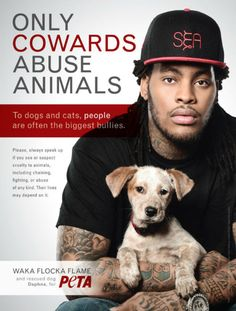 "Celebrities are big icons and idols for teenagers and young adults so using the celebrity artist Waka Flocka Flame for fighting animal abuse conveys a big message to the people who idolize him. This ad above shows that Waka Flocka Flame is compassionate towards animals like us. On the ad, it says, ""ONLY COWARDS ABUSE ANIMAL,"" which is a powerful statement that is an eye opener for people like YOU. I believe that celebrities have a big influence on the younger generation and are the trend…"