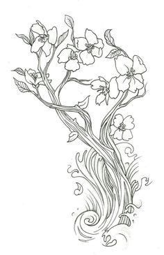 blossom tree drawing furthermore cherry blossom tree tattoo outline . Chinese Cherry Blossom, Cherry Blossom Drawing, Cherry Blossom Flowers, Cherry Tree, Blossom Tree Tattoo, Blossom Trees, Flower Pattern Drawing, Flower Patterns, Adult Coloring
