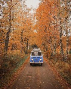 Van Life Autumn Aesthetic, Travel Aesthetic, Autumn Photography, Travel Photography, Wolkswagen Van, Vw Beach, Vw Camping, Road Trip, Lombard Street