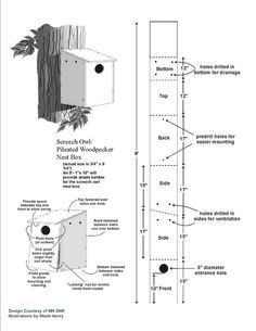Nesting box for wood pecker birds   Wild Birds Unlimited: Is There a Pileated Woodpecker Nest Box?