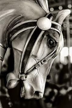 Carousel horse black and white photo