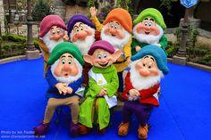 The Seven Dwarfs...Grumpy, Sneezy, Dopey, Doc, Happy, Bashful and Sleepy
