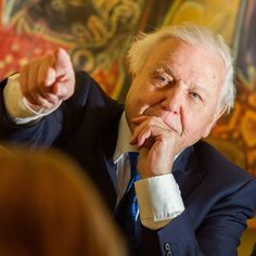 Sir David Attenborough's most profound and beautiful quotes David Attenborough Quotes, Father Time, Bbc Tv, Tv Presenters, Life And Death, Natural World, Great Quotes, Wonders Of The World, Life Lessons