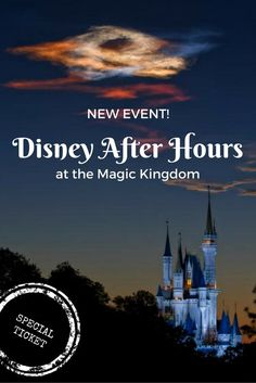 Disney just introduced a new special ticket that lets you spend 3 hours in the Magic Kingdom after closing time.