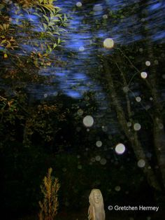"""In this photo, orbs have been caught in a torsion vortex. Miceal Ledwith, co-author of The Orb Project, has several photos of this phenomenon in his book. If orbs can be a manifestation of our soul/consciousness energy, could we be looking at the """"tunnel"""" that is mentioned in near-death experiences? Might this be the gateway to """"Heaven"""" or other dimensions? Could these vortices be the doorways used by E.T.'s that allows them to appear and disappear instantly? Food for thought.. ."""
