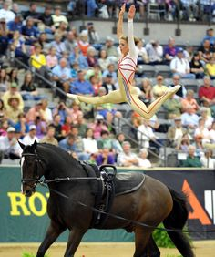 vaulting at its best!