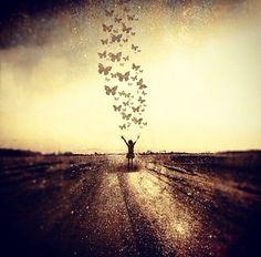 Freedom. Butterflies