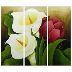 Novica 'Calla Lilies and Tulip' by Mariana Gonzalez Oil Painting Print on Canvas
