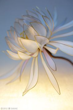 """""""Kanzashi"""" the Japanese ornamental hairpin; Spring Epiphyllum Oxypetalum - Snow, moon, and flowers: beauty of the four seasons 2012 by Sakae 榮 - Japan's fine Kanzashi creator Nylon Flowers, Wire Flowers, Japanese Culture, Japanese Art, Japanese Hairstyle, Barrettes, Hair Ornaments, Blue Cream, Flower Making"""
