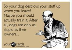 yep!! couldnt have said it any better myself lol my dog has separation anxiety but still does NOT chew up anything but his toys.