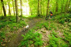 Pisgah: The Adirondacks' Finest Uphill Bike Park Saranac Lake, Bike Parking, Plan Your Trip, Travel Around, Mountain Biking, Pond, Skiing, Summertime, Trail