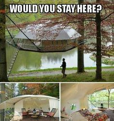 Tree House tent. Fantastic!