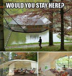 Tree House tent. Fantastic!