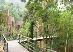 Tree top walkway at treehouses at Garden Valley - Mei Jie Mountain Hotspring resort in Liyang, China. by AchterboschZantman architecten #treehouse #tree #top #walkway #path #bamboo #forest #nature #wood #slats