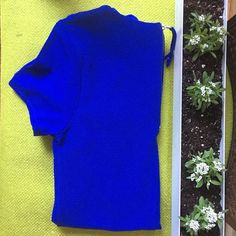 Blue Short Sleeve Dress GORGEOUS bright blue shirt-sleeve dress. Perfect for literally any occasion.  A re-Posh from one of my favorite Poshers that was just a tad too small for my hips  Don't like the price? Make me an offer with the button below!  one clothing Dresses Mini