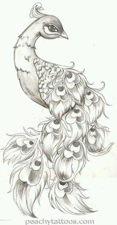 Een creative tekening van een pauw. Prachtig wie deze tekening heeft gemaakt moet wel heel veel inspiratie's hebben .:
