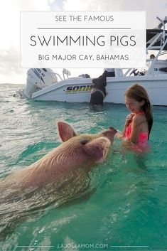 Why you need to add swimming with pigs in the Bahamas to your life bucket list. #GoPro