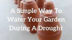 A Simple Way To Water Your Garden During A Drought | Blue Yonder Urban Farms | http://blueyonderurbanfarms.com/5441/a-simple-way-to-water-your-garden-during-a-drought