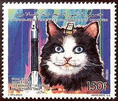 Postage stamp issued in 1992 by the Comoro Islands, from a set depicting space animals, including Felicette incorrectly named as Felix