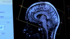 """Brain scanning could be used to design """"scientifically perfect"""" products"""