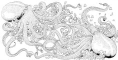 pages from Coloring Ocean Mandalas - Google Search