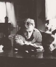 #Dean James #cats