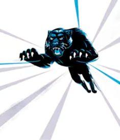 Carolina Panthers, Darth Vader