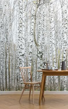 Add definition and detail to your wall with this white & silver birch tree wallpaper, a natural design that will impress. Wood Effect Wallpaper, Tree Wallpaper Mural, Forest Wallpaper, Slim Tree, Forest Mural, Birch Forest, Interior Architecture, Interior Design, Wall Murals