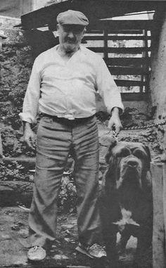 1970 Neapolitan Mastiff